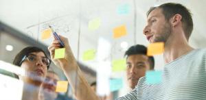 gestión de recursos en project portfolio management